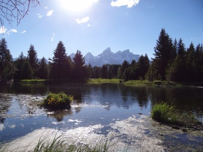 Grand Teton Nationalpark - Schwabacher Landing