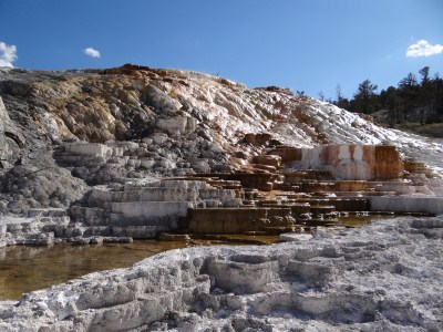 Yellowstone Nationalpark - Mammoth