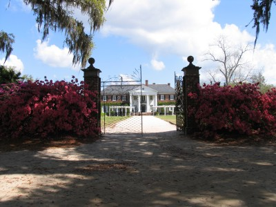 Charleston - Boone Hall Plantation